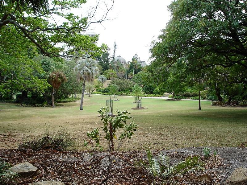 Brisbane Tipps City Botanic Gardens