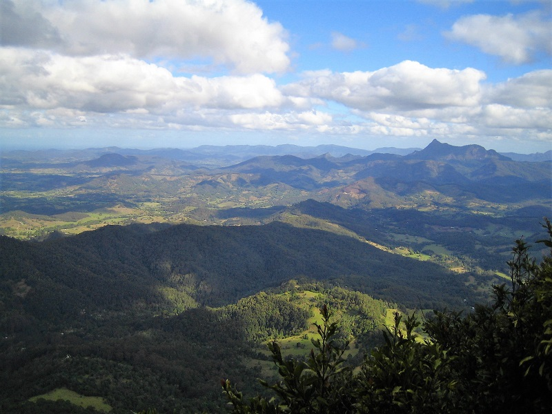 Daytrips Brisbane_Springbrook Best Of All Lookout